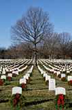 Arlington National Cemetery with Christmas wreaths Stock Images