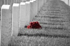 Arlington national cemetery. Flowers by a grave at Arlington national cemetery Stock Photo