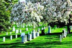 Arlington National Cemetery Royalty Free Stock Photos