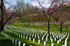 Arlington National Cemetery. Rows of unmarked tombstones at Arlington National Cemetery, Washington D.C Royalty Free Stock Images