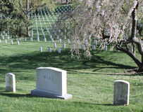 Arlington National Cemetery in Spring Stock Images