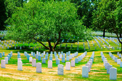 Arlington National Cemetery VA near Washington DC Stock Images
