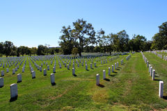 Arlington National Cemetery. A view from within Arlington National Cemetery Royalty Free Stock Images