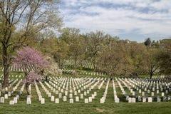 Arlington National Cemetery Royalty Free Stock Image