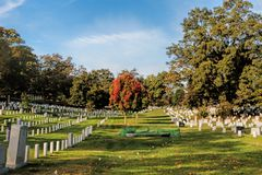 Arlington National Cemetery, Virginia, USA. There are thousands of graves at Arlington National Cemetery, USA. America`s Shrine to those who honorably served our Stock Image