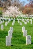 Arlington National Cemetery. Virginia Washington Royalty Free Stock Photo