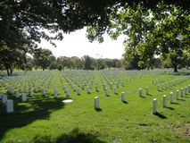 Arlington National Cemetery. In Washington DC Royalty Free Stock Photos