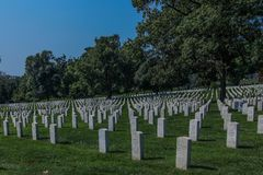 Arlington-nationaler Friedhof in DC stockfotos