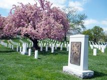 Arlingtonbegraafplaats Eiser Herdenkingsapril 2010 Stock Foto's