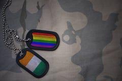 armémellanrum, hundetikett med flaggan av skjuldivoire och bögregnbågeflaggan på den kaki- texturbakgrunden Royaltyfri Foto