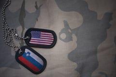 armémellanrum, hundetikett med flaggan av USA och Slovenien på den kaki- texturbakgrunden Royaltyfri Foto