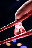 Arm of a boxer taking rest in corner of the ring Royalty Free Stock Images