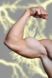 Arm des Mannes, der zweiköpfigen Muskel zeigt Stockfotos
