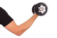 Arm and dumbbell Royalty Free Stock Photography