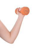 Arm and hand holding a dumbbell Stock Photo
