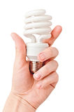 Arm holding light bulb. Isolated on white Royalty Free Stock Photography