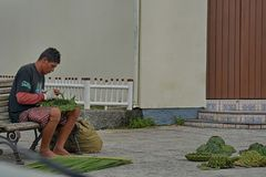 Armação armacao παραλιών, Florianopolis, Βραζιλία Στοκ Φωτογραφία