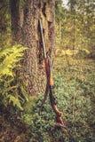 Arma de la caza en el tronco de árbol en bosque durante temporada de caza Foto de archivo libre de regalías