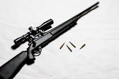 1/6 arma de la escala Fotografía de archivo