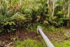 Arma de Piti situado en la selva sobre la playa de Asan en Guam Imagen de archivo