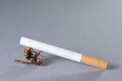 Arma del cigarrillo Imágenes de archivo libres de regalías