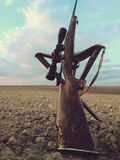 Arma do rifle dos caçadores foto de stock royalty free