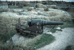 Arma grande Ilustração do Vetor