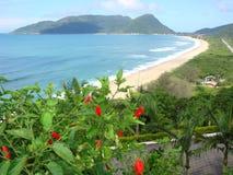 Armacao Florianopolis Brésil Images stock