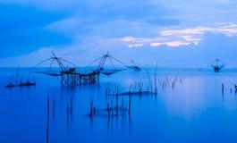Armadilha ajardine, do peixe no lago na manhã e fundo do céu azul Imagem de Stock
