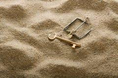 Armadilha chave Fotos de Stock