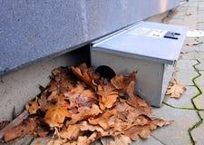 Armadilha de rato colocada fora de uma loja Fotografia de Stock