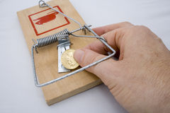 Armadilha do dinheiro - moeda de ouro Fotos de Stock