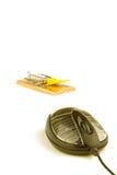 Armadilha do rato Imagem de Stock