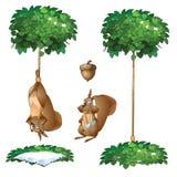 Armadilha para o esquilo, animal do cair e com pata quebrada ilustração stock