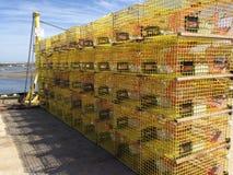 Armadilhas amarelas da lagosta imagem de stock