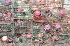 Armadilhas do caranguejo em Florida Foto de Stock