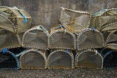 Armadilhas dos peixes Foto de Stock Royalty Free