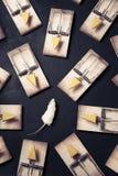 Armadilhas múltiplas do rato com queijo Foto de Stock