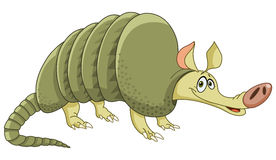 Armadillo. Illustration of a cheerful armadillo Royalty Free Stock Images