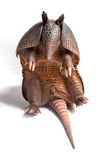 Armadillo. Mulita, Armadillo of six bands, on to white background stock image