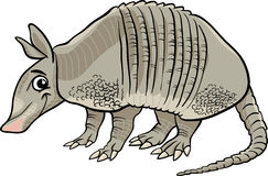 Armadillo animal cartoon illustration Royalty Free Stock Photography