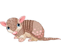 Armadillo cartoon Royalty Free Stock Image