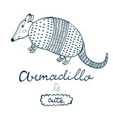 Armadillo is cute. Royalty Free Stock Photography