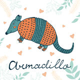 Armadillo illustration. Hand drawn card with cute armadillo Stock Photography