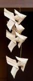 Armadura de la carpa Fotos de archivo libres de regalías