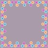 Armadura floral del modelo de la frontera del marco de la flor hermosa Fotografía de archivo libre de regalías