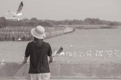 Armadura y situación del sombrero de la mujer que llevan en el puente concreto, ella que mira el mar y las gaviotas que vuelan en Imágenes de archivo libres de regalías