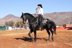 Armand der Gesangcowboy auf seinem schwarzen Hengst Lizenzfreie Stockfotos