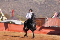 Armand le cowboy chanteur sur son étalon noir Images libres de droits