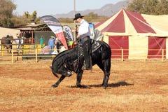Armand le cowboy chanteur sur son étalon noir prenant l'arc Image libre de droits